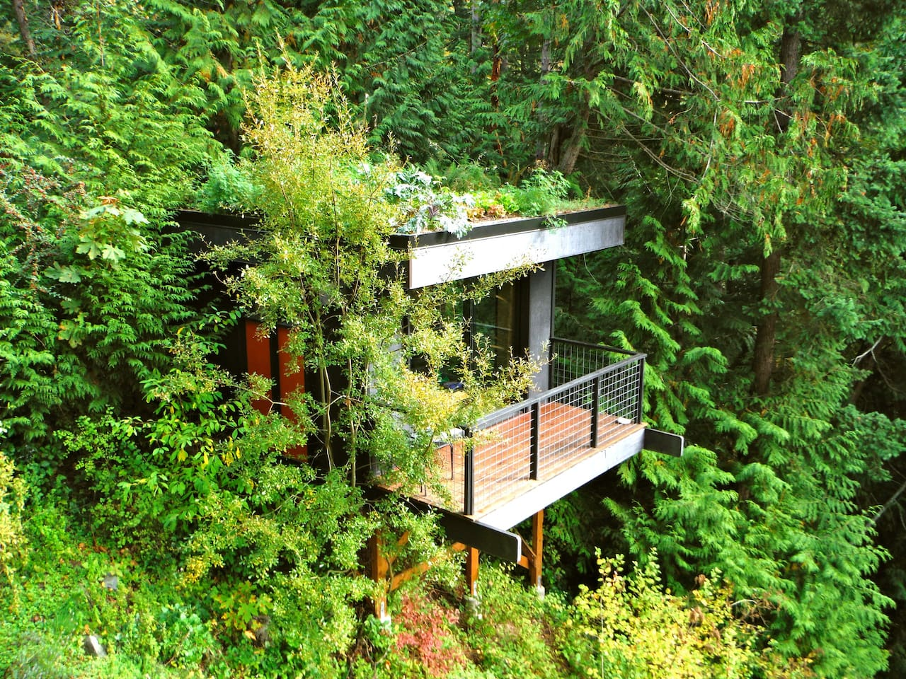 1556876277 633 15 amazing treehouse rentals take you off the grid in style - 15 Amazing Treehouse Rentals Take You Off The Grid In Style