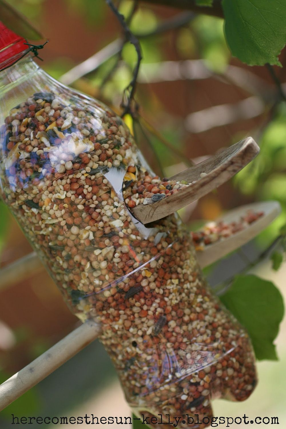 1559675287 32 40 diy bird feeder ideas for a live garden - 40 DIY Bird Feeder Ideas for a Live Garden