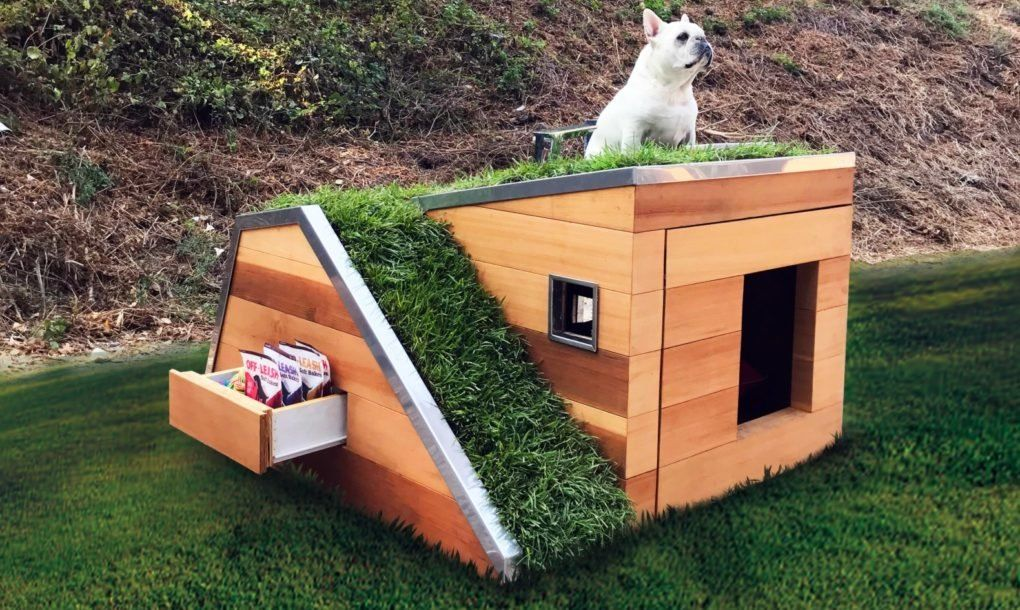 1559810074 509 cool dog houses with modern designs and fancy features - Cool Dog Houses With Modern Designs And Fancy Features