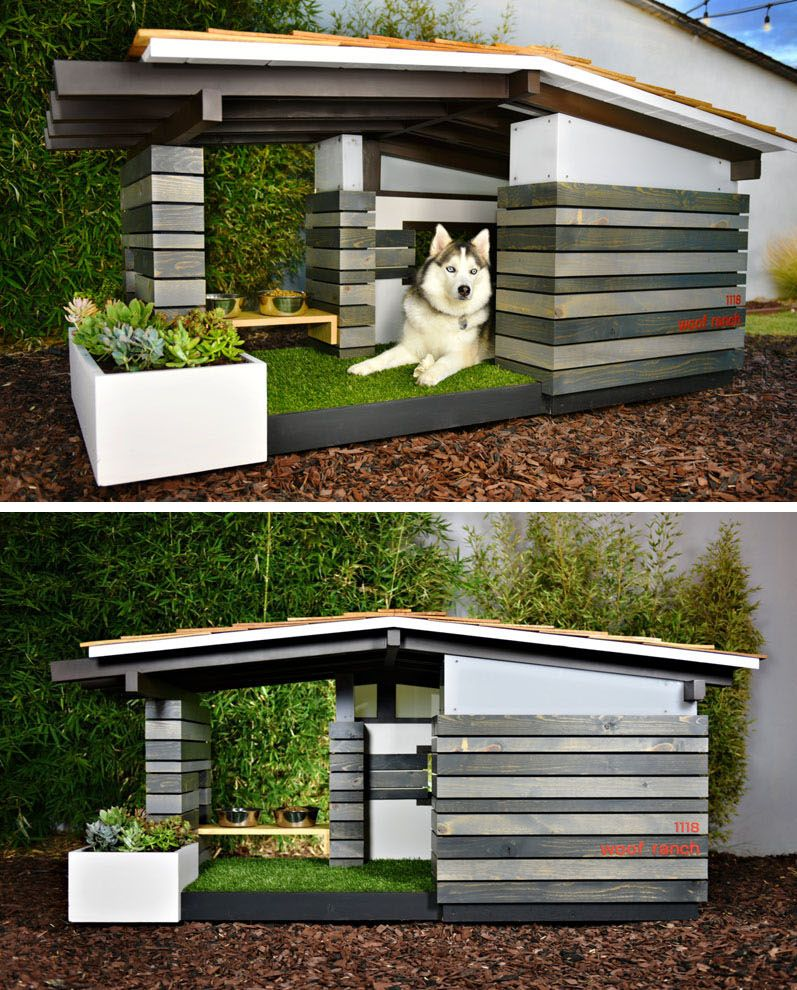 1559810074 740 cool dog houses with modern designs and fancy features - Cool Dog Houses With Modern Designs And Fancy Features