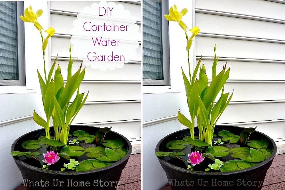 1559894564 265 25 cheap diy ponds to bring life to your garden - 25 Cheap DIY Ponds to Bring Life to Your Garden