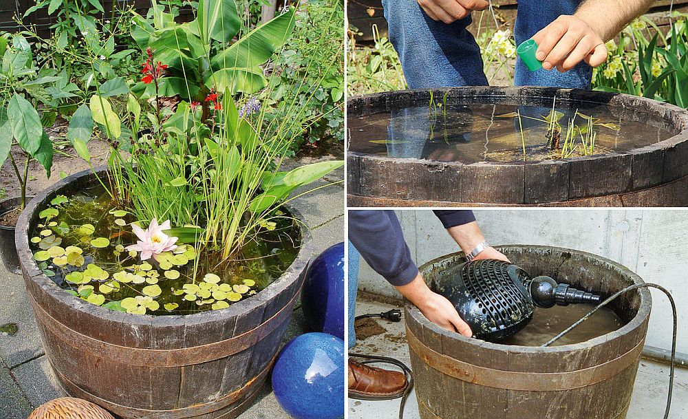 1559894564 287 25 cheap diy ponds to bring life to your garden - 25 Cheap DIY Ponds to Bring Life to Your Garden