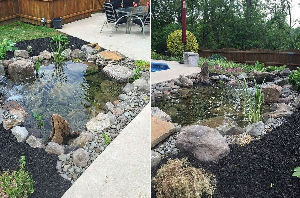 1559894567 136 25 cheap diy ponds to bring life to your garden - 25 Cheap DIY Ponds to Bring Life to Your Garden