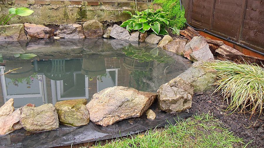 1559894567 313 25 cheap diy ponds to bring life to your garden - 25 Cheap DIY Ponds to Bring Life to Your Garden