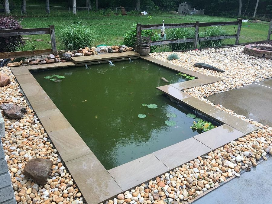 1559894567 874 25 cheap diy ponds to bring life to your garden - 25 Cheap DIY Ponds to Bring Life to Your Garden