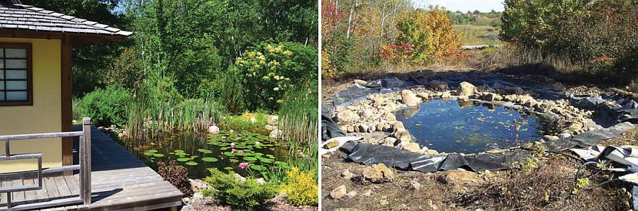 1559894568 756 25 cheap diy ponds to bring life to your garden - 25 Cheap DIY Ponds to Bring Life to Your Garden
