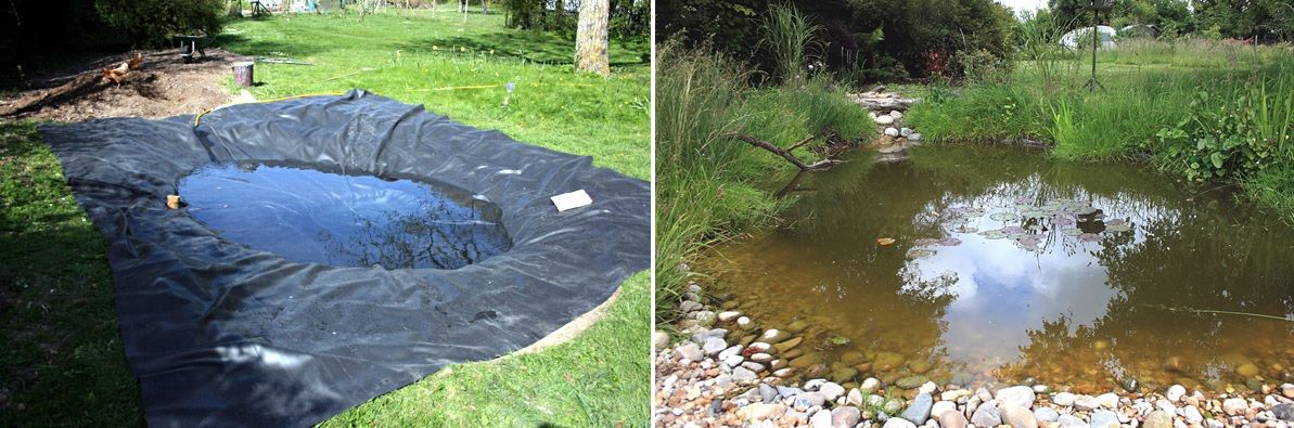 1562746613 860 how to add a water feature to your backyard diy pond ideas - How To Add A Water Feature To Your Backyard – DIY Pond Ideas