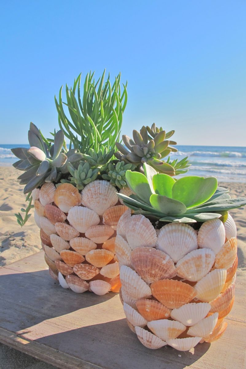 1563276873 132 put your beach treasures on display beautiful diy seashell crafts - Put Your Beach Treasures On Display – Beautiful DIY Seashell Crafts