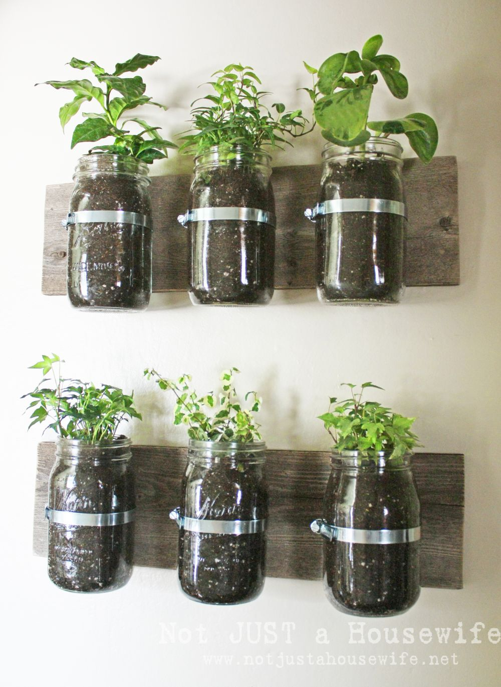 1567594061 226 15 stylish ways to make a hanging wall vase or planter - 15 Stylish Ways To Make A Hanging Wall Vase Or Planter