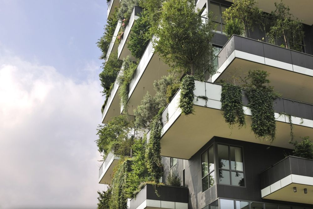 1569316430 962 amazing living facades that take over entire buildings - Amazing Living Facades That Take Over Entire Buildings