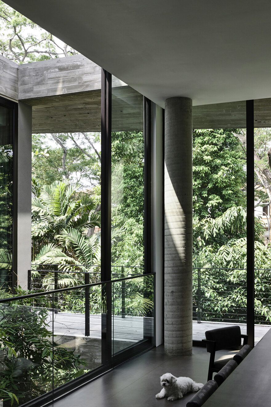 1569879310 715 a stylish glass and concrete house shielded by lush greenery - A Stylish Glass And Concrete House Shielded By Lush Greenery