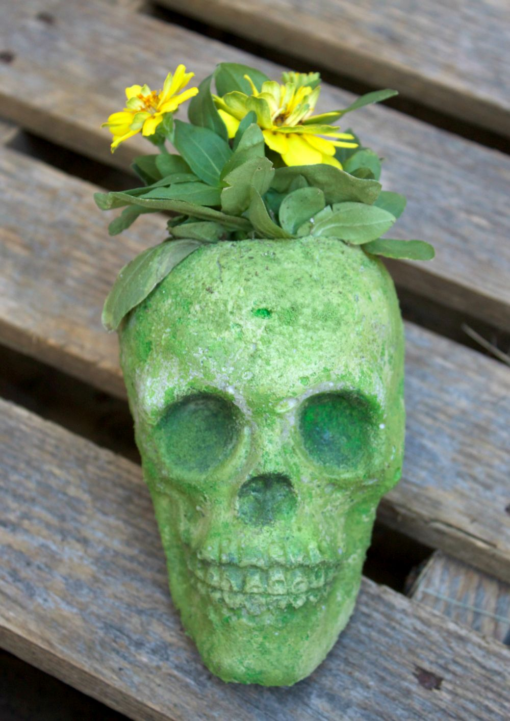 1570526989 776 start the spooky season in style with some amazing skull crafts - Start The Spooky Season In Style With Some Amazing Skull Crafts
