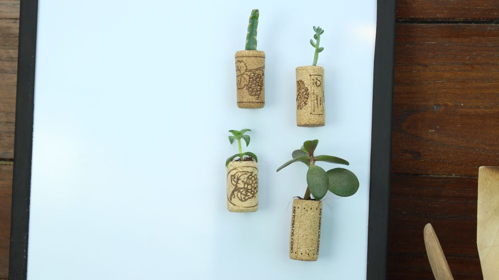 1570793181 752 15 cool little projects you can do with cork - 15 Cool Little Projects You Can Do With Cork