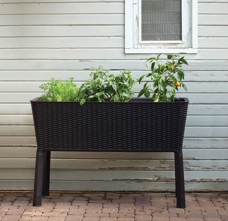 1571323956 123 25 best gardening gifts for someone with a green thumb - 25 Best Gardening Gifts For Someone With A Green Thumb