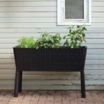 1571323956 850 25 best gardening gifts for someone with a green thumb - 25 Best Gardening Gifts For Someone With A Green Thumb