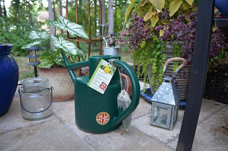 1571323957 860 25 best gardening gifts for someone with a green thumb - 25 Best Gardening Gifts For Someone With A Green Thumb