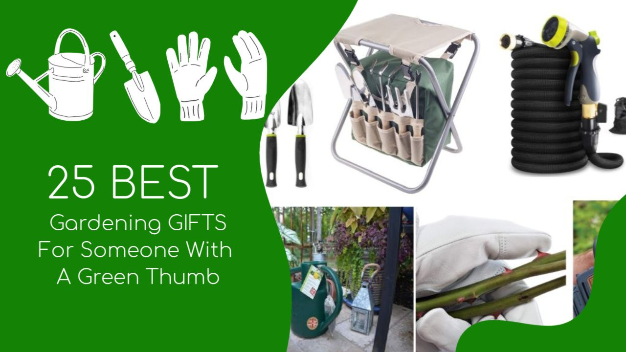 25 best gardening gifts for someone with a green thumb - 25 Best Gardening Gifts For Someone With A Green Thumb